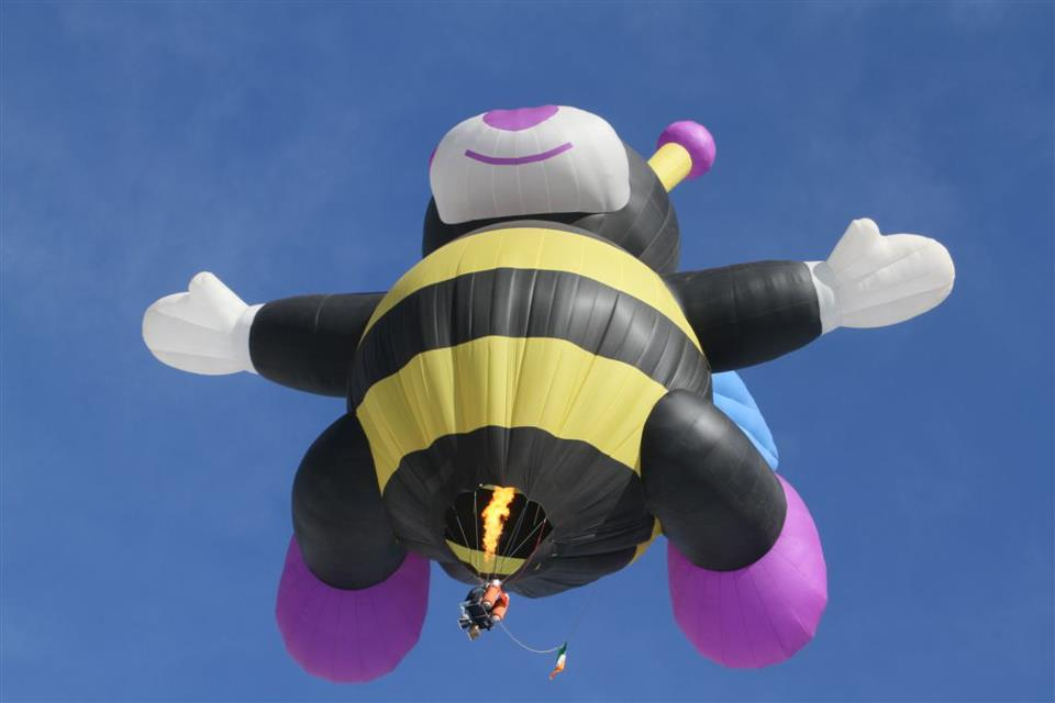 Joelly the Baby Bee, built by Zing, flying in Chateau doex